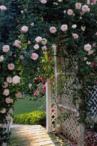 Romantic garden entrance