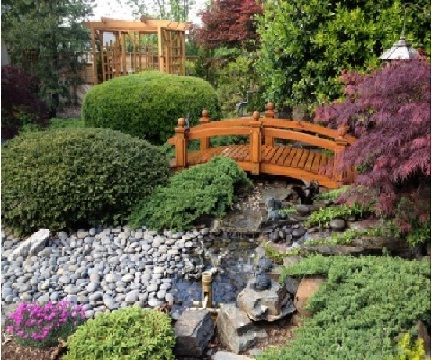 Asian garden with a statement bridge