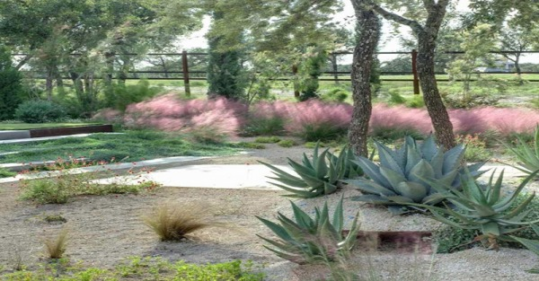 Modern pink tone in the garden #garden #gardenideas #homedecor #backyard #decorhomeideas