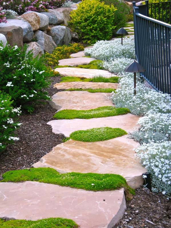 Stepping stone grass #garden #diy #gardenideas #pathway #alley #gardening #landscaping #outdoordesign #backyard #decorhomeideas