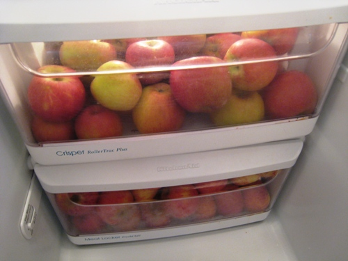 Apples last longer when stored properly #apple #storage #food #tips #kitchen #decorhomeideas