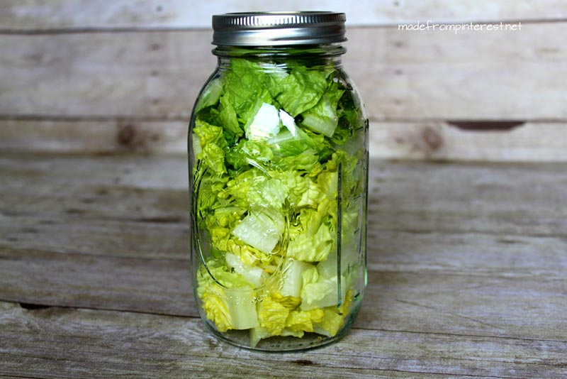 Lettuce in a jar storage #storage #food #tips #kitchen #decorhomeideas