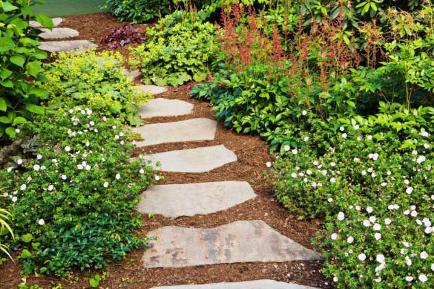 Simple pathway #garden #diy #gardenideas #pathway #alley #gardening #landscaping #outdoordesign #backyard #decorhomeideas