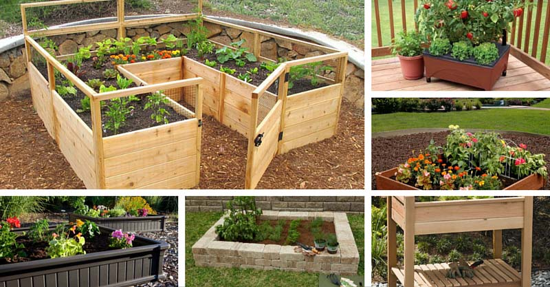 21 Raised Garden Bed Kits Ultimate Buying Guide