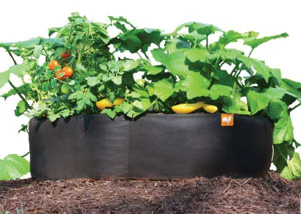 Amazing option! #garden #raisedbed #planters #diy #landscaping #flower #vegetables #guide #decorhomeideas