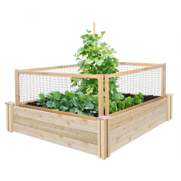 Animal barrier #garden #raisedbed #planters #diy #landscaping #flower #vegetables #guide #decorhomeideas
