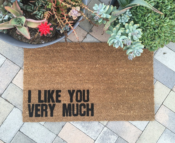 I like you very much
