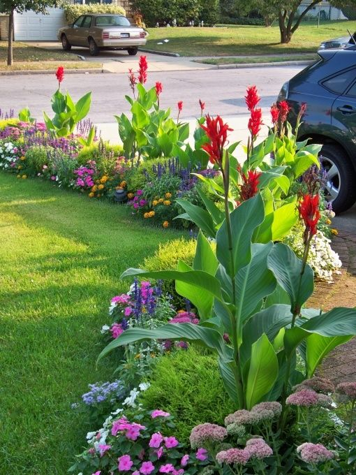 Beautiful colorful border with flowers garden idea