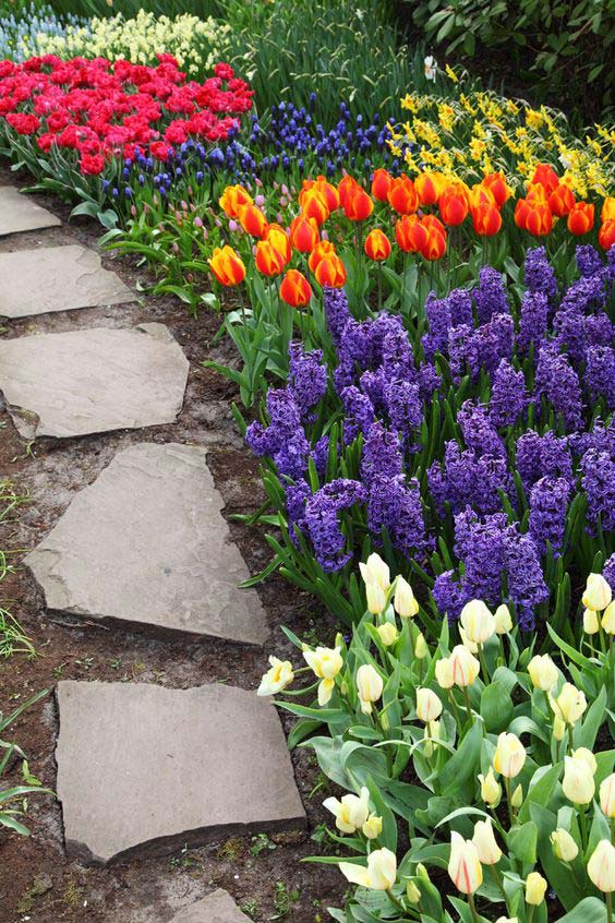 Beautiful tulips next to stone path garden idea #gardens #gardening #gardenideas #gardeningtips #decorhomeideas