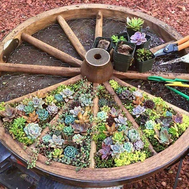 Green wheel garden decoration idea #gardens #gardening #gardenideas #gardeningtips #decorhomeideas