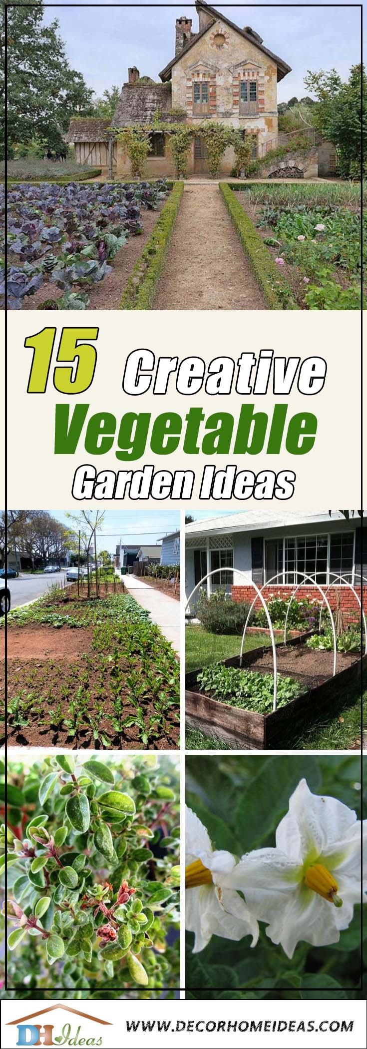 15 Vegetable Garden Ideas Front Yard Feast In Disguise | Grown your own front yard vegetable garden with these tips #gardens #gardening #gardenideas #vegetables #gardeningtips #decorhomeideas