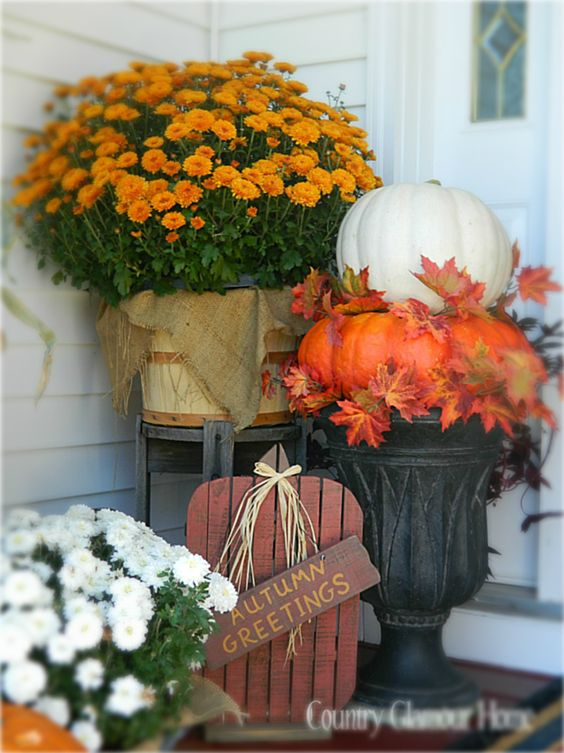 Colorful mums and pumpkins fall front porch decoration #frontdoor #porch #decor #falldecor #pumpkin #autumn #decoratingideas #homedecor #decorhomeideas