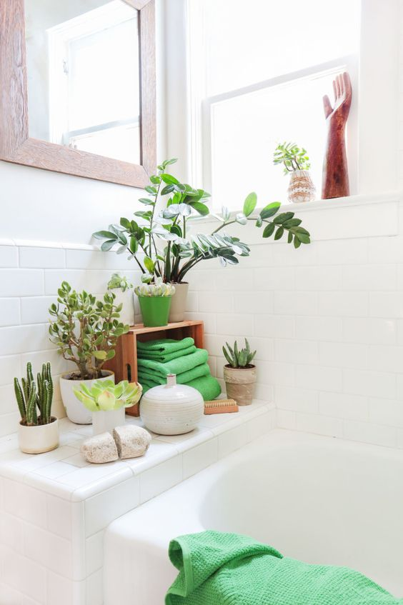 Use green plants for zen spa style bathroom #spadecor #bathroom #homespa #spahome #relaxhome #spa #homedecor #decoratingideas #spadesign #decorhomeideas