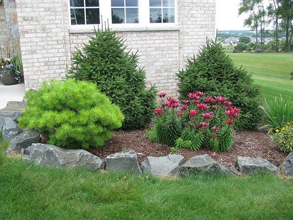 Bushes and Flowers with Natural Rock Edges #lawnedging #lawnedgingideas #landscaping #gardening #gardens #gardenideas #gardeninigtips #decorhomeideas