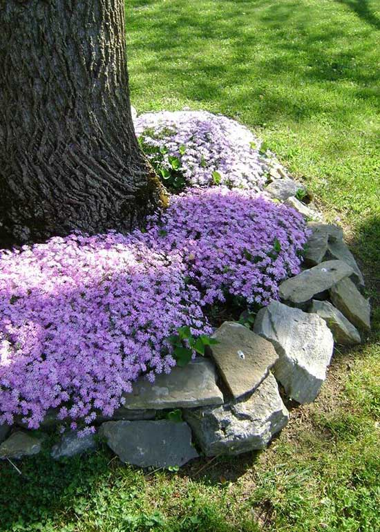 22 Beautiful Flower Beds Around Trees