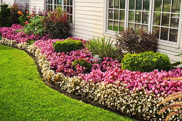 Perennial Flower Bed for Summer long Blooms #flowerbed #flowerpot #gardens #gardenideas #planter #gardeningtips #decorhomeideas