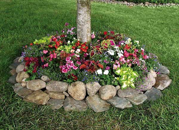Tree Base Flower Bed with Rocks #flowerbed #flowerpot #gardens #gardenideas #planter #gardeningtips #decorhomeideas