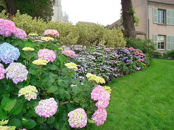 Flower bed ideas for small yard or garden #flowerbed #flowerpot #gardens #gardenideas #planter #gardeningtips #decorhomeideas