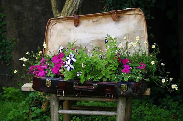 Vintage suitcase turned into flower planter #flowerbed #gardens #decorhomeideas