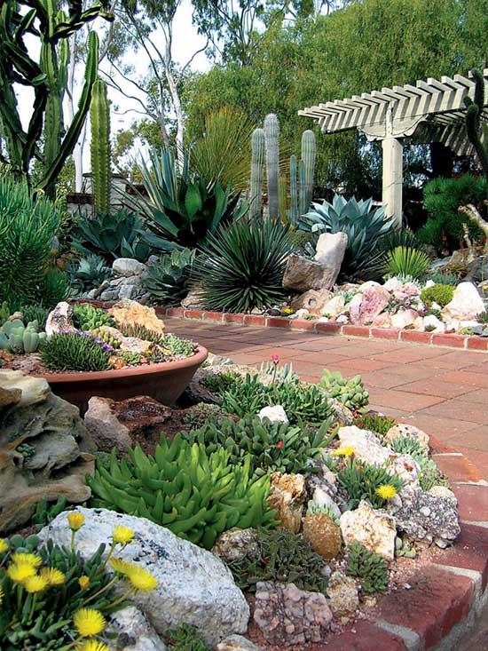 Succulent Garden Ideas arranged #succulents #garden #droughttolerant #landscaping #decorhomeideas