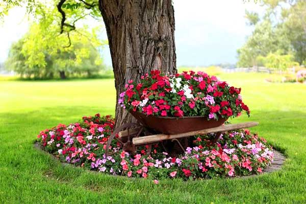 Red flowers small garden around a tree. #gardens #gardening #gardenideas #gardeningtips #decorhomeideas