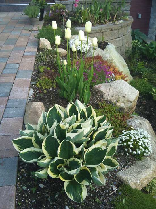 Sidewalk small garden with flowers and rocks. #gardens #gardening #gardenideas #gardeningtips #decorhomeideas