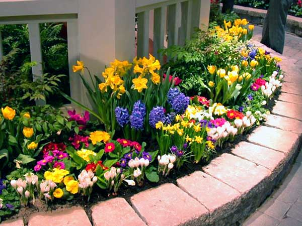 Small flowers garden just below your windows. #gardens #gardening #gardenideas #gardeningtips #decorhomeideas