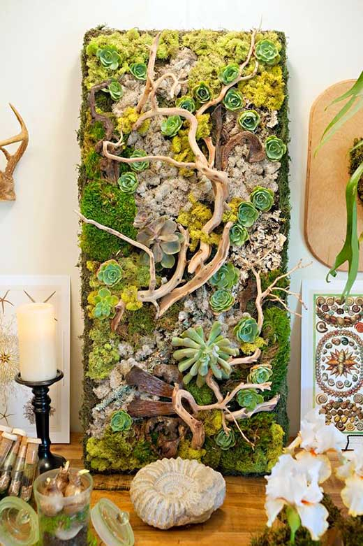 Vertical natural succulent garden. #succulent #succulentlove #succulents #homedecor #decoratingideas #decorhomeideas