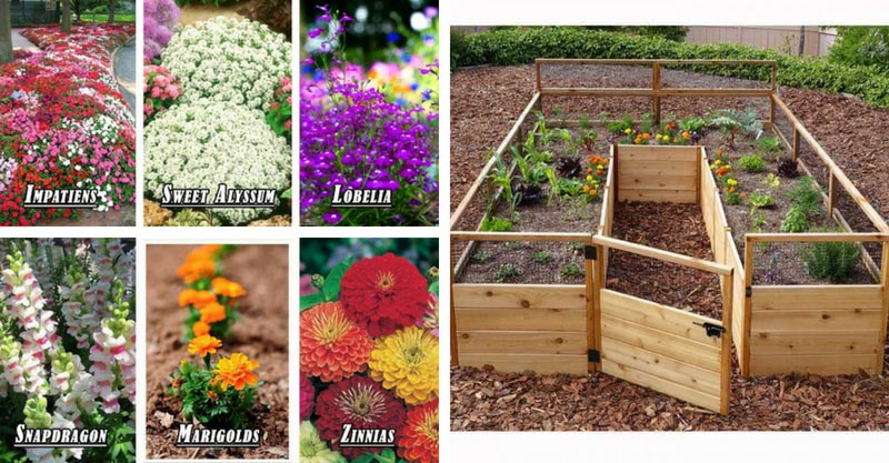 How to build flower bed