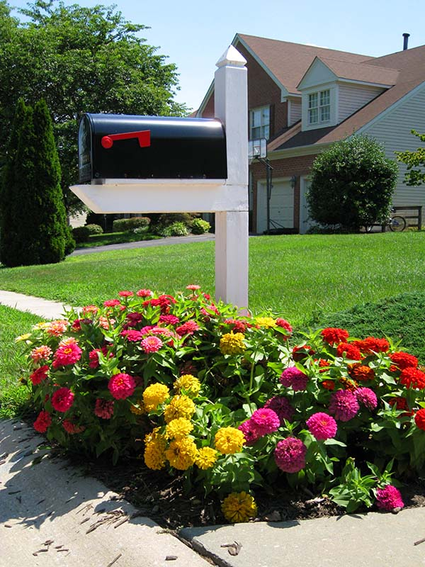 Colorful flower bed around mailbox #flowerbed #mailbox #garden #curbappeal #flowers #decorhomeideas