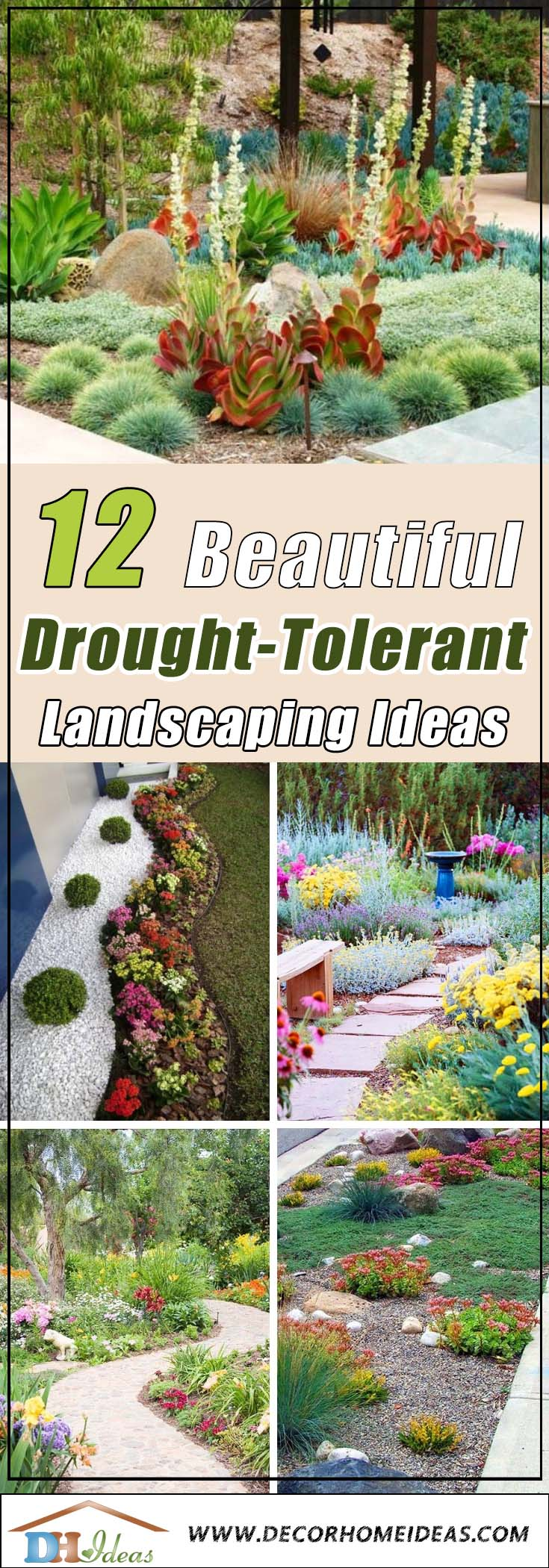 12 Best Drought Tolerant Landscaping Ideas #droughttolerant #landscaping #garden #decorhomeideas