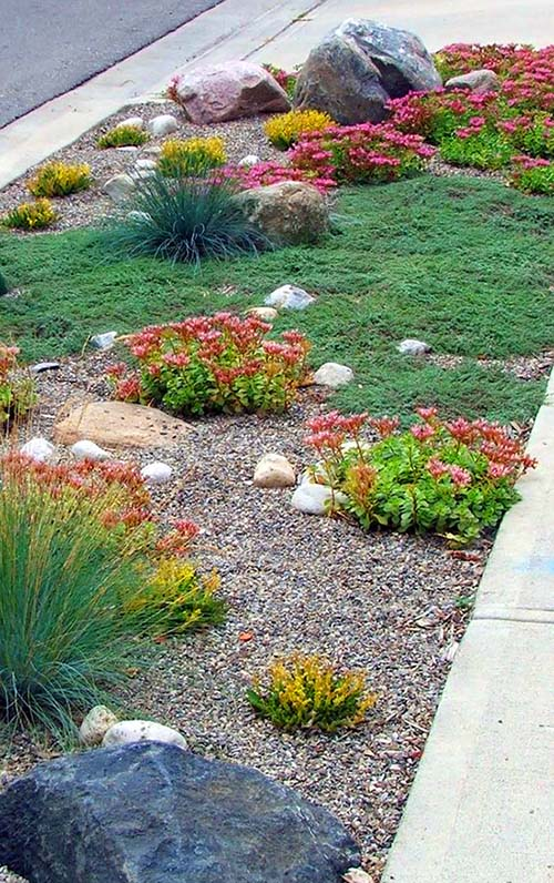 Drought tolerant landscaping pebbles and rocks #droughttolerant #landscaping #garden #decorhomeideas