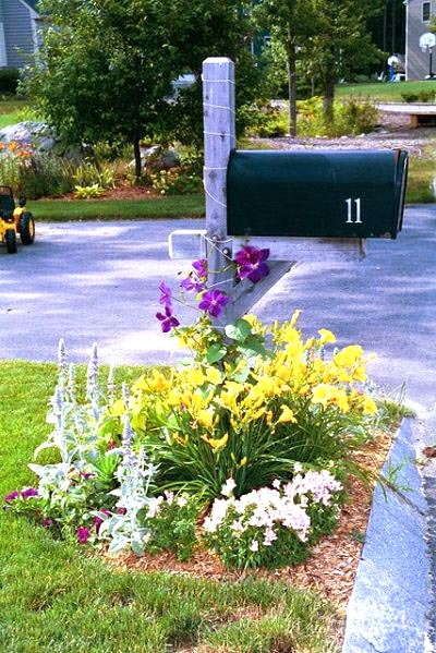 Flower bed garden around mailbox #flowerbed #mailbox #garden #curbappeal #flowers #decorhomeideas