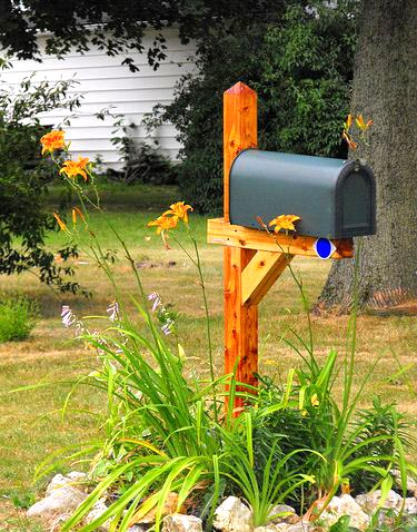 Mailbox flower bed with lilies #flowerbed #mailbox #garden #curbappeal #flowers #decorhomeideas