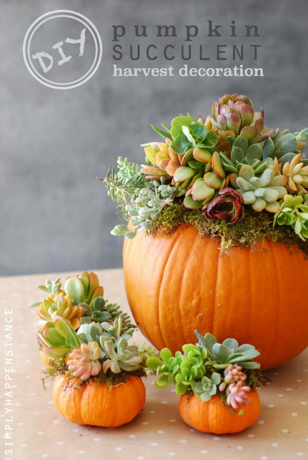 DIY Pumpkin Succulent Fall Centerpiece #fallcenterpiece #falldecor #diy #falldecoration #thanksgiving #decorhomeideas #pumpkin