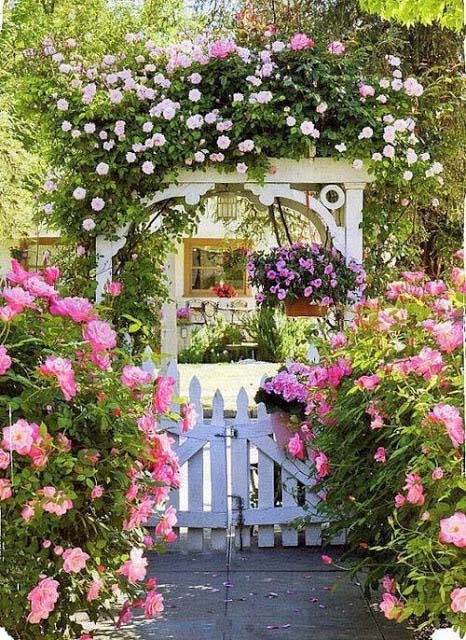 Cottage garden front door #cottagegarden #cottage #garden #landscaping #backyard #flowers #decorhomeideas