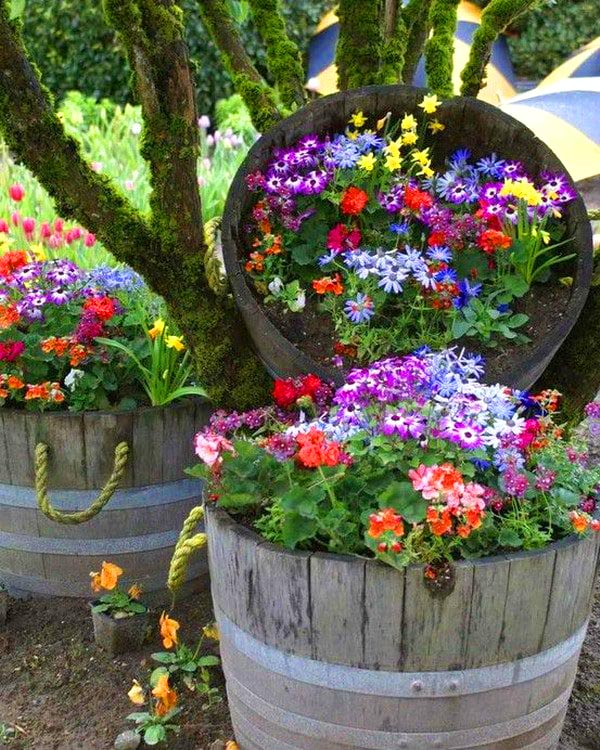 Flowers in old wine barrels #diy #winebarrel #flowerplanter #repurpose #decorhomeideas