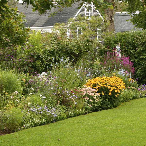 Lawn edging layout #cottagegarden #cottage #garden #landscaping #backyard #flowers #decorhomeideas