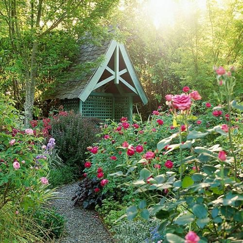 Tiny cottage garden #cottagegarden #cottage #garden #landscaping #backyard #flowers #decorhomeideas