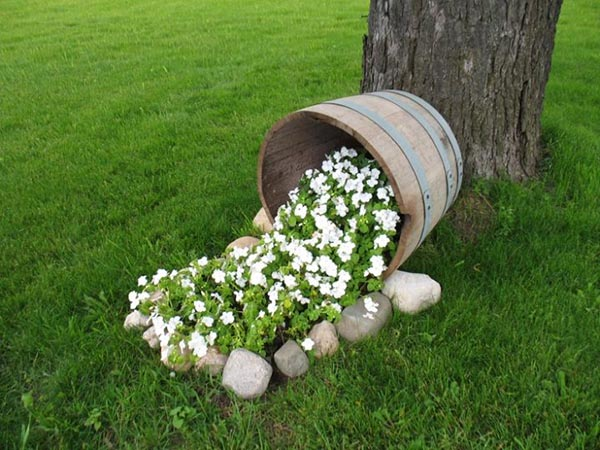 Wine barrel flower bed around tree #diy #winebarrel #flowerplanter #repurpose #decorhomeideas