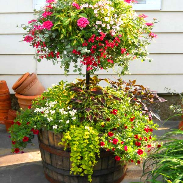Wine barrel planter flower pot #diy #winebarrel #flowerplanter #repurpose #decorhomeideas