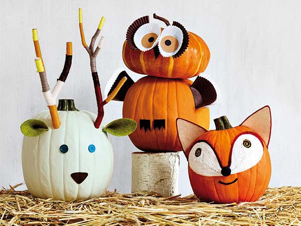Pumpkin Zoo No-Carve Ideas #pumpkin #falldecor #nocarve #homedecor #decorhomeideas