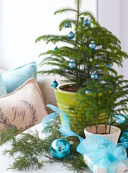 Christmas Pine fresh decoration #Christmas #Christmasdecor #nature #natural #natureinspired #decorhomeideas