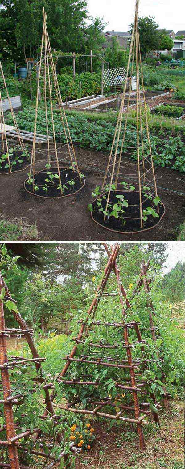 Build Tepees For Vegetable Garden