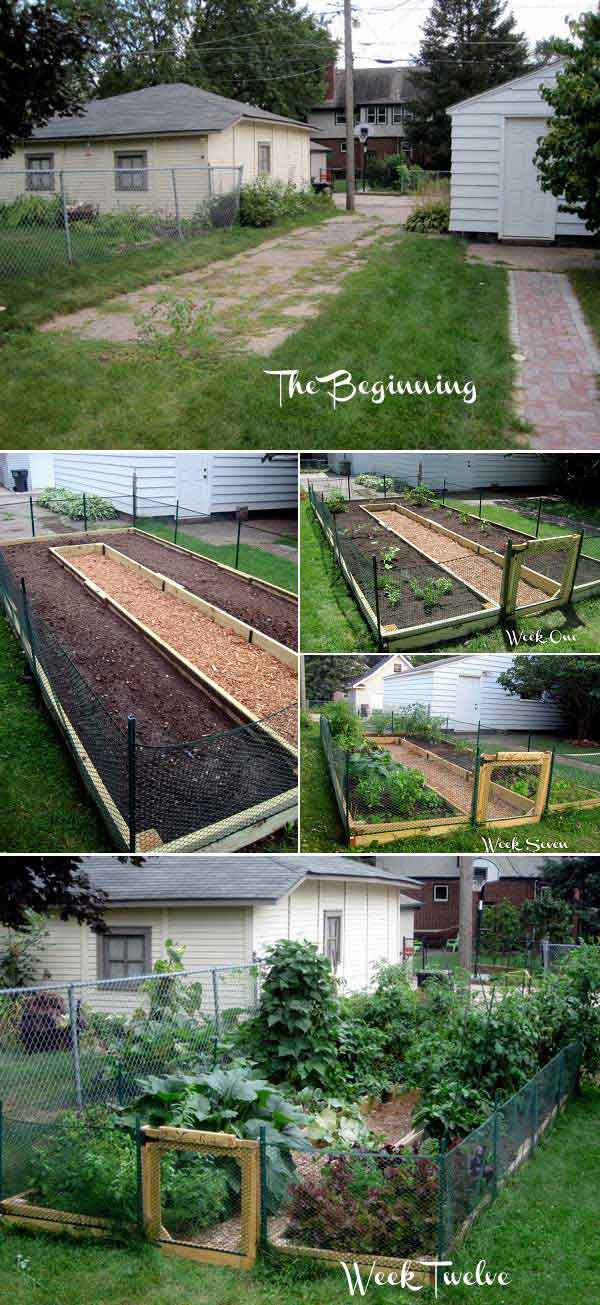 DIY U Shaped Raised Garden
