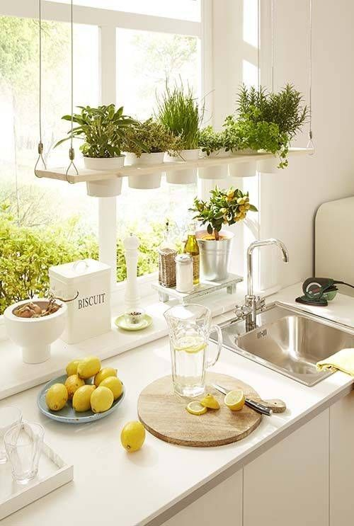Flower Pot Kitchen Hanging Storage