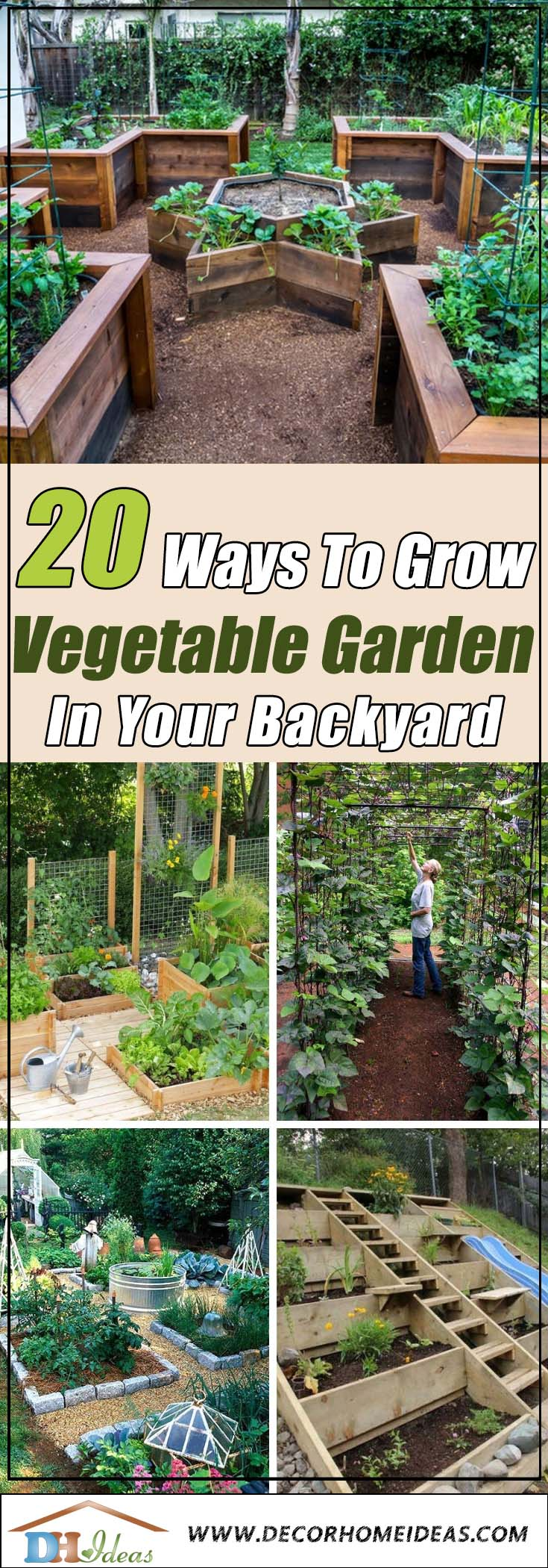 How To Grow Vegetable Garden