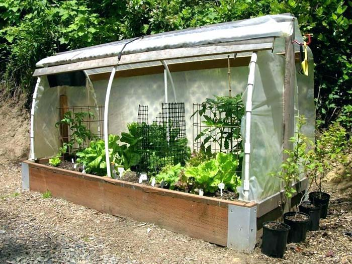 Raised Bed Cloche Vegetable Garden