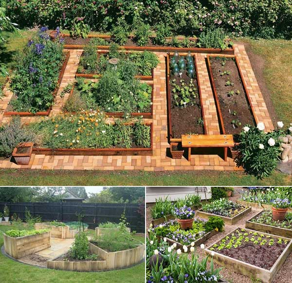 Symmetry Vegetable Garden