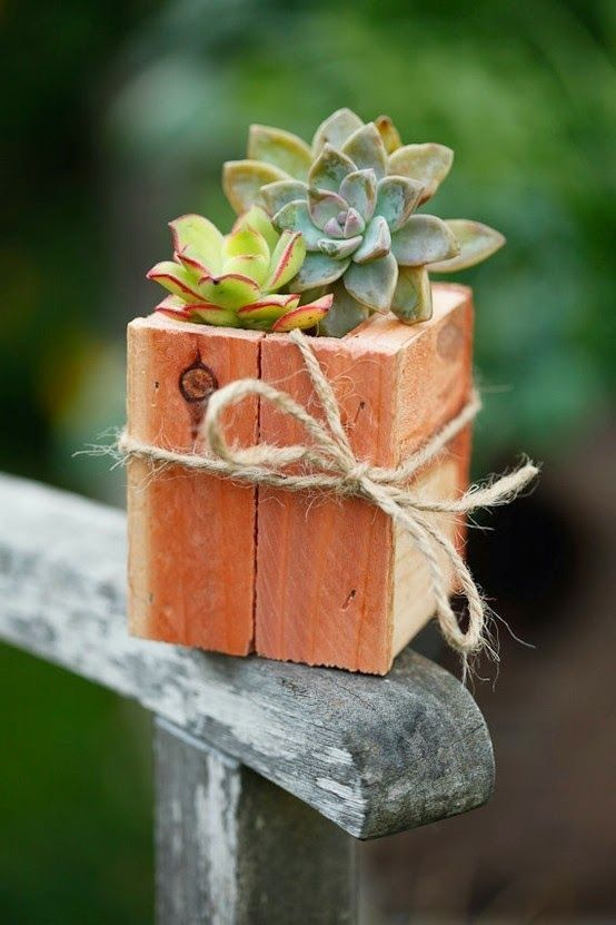 Wooden Box With Succulents #rustic #centerpieces #woodenbox #homedecor #decorhomeideas